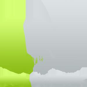 Loom Network Logo Loom-Network